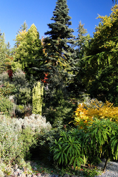 The Miller Garden.