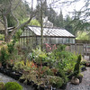 Miller Garden<br /> The Nursery