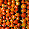 Final Harvest<br /> Habaneros<br /> October 6th 2011
