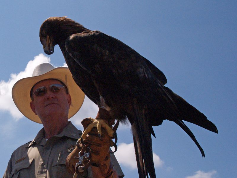 Colonel James Stinebaugh, Director with Eagle at the Texas Parks and Wildlife Expo, 3 Oct 2004