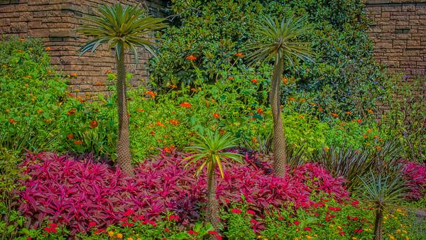 Powell Garden Grandkiddos-1-3