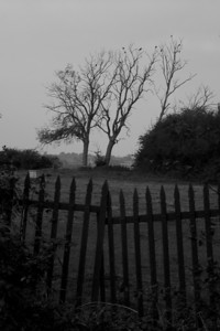 The wonky gate (not to mention the boring sky) just seemed right for a mildly sinister mono conversion.