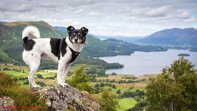 Muncho in the Lake District