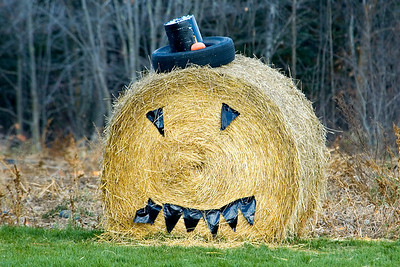 Haystack Pumpkin - Itasca County, MN