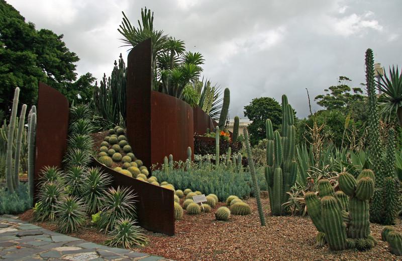 Cactus and succulent garden, Sydney Botanical Gardens, Australia - January 2008