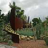 Cactus and succulent garden, Sydney Botanical Gardens, Australia - January 2008