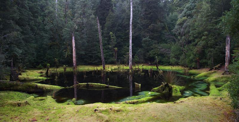 Sinkhole, Tarkine, Tasmania