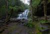 Liffee Falls, Tasmania