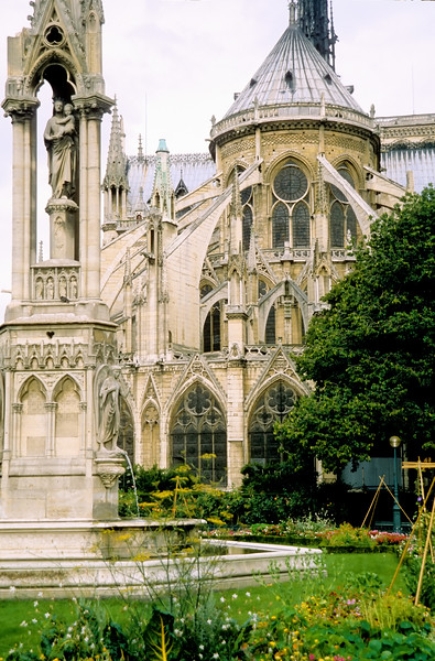 Flying buttresses - Notre Dame - Paris, France