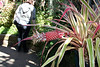 Botanical Building<br /> Balboa Park<br /> 5 Sep 2010