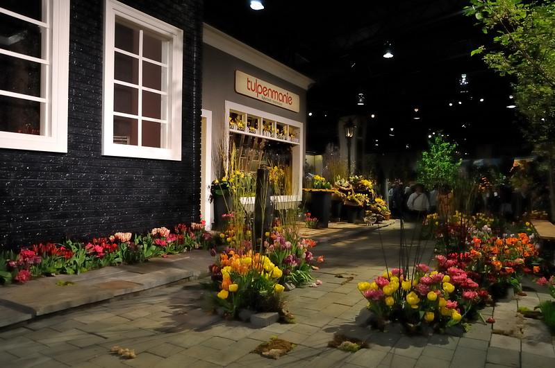 Amsterdam tulips - 2010 Philadelphia Flower Show