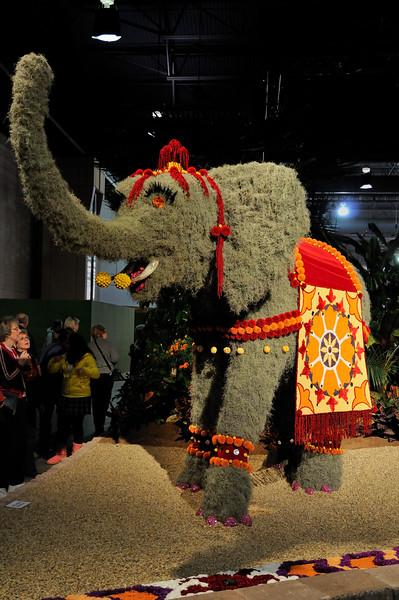 India - Flower elephant - 2010 Philadelphia Flower Show