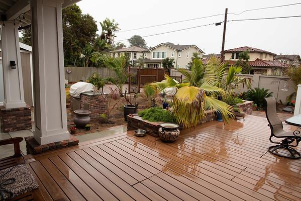 Leucadia new palm planting and rain 3/06/2015