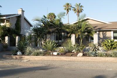 Merging front gardens