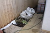 Compost pile after compost bin had been blown away again!<br /> 31 January 2015