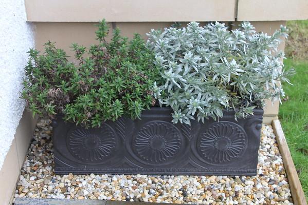 Front Door Planter