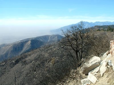 South slope of San Bernardino Mountains, below Highway 18. 27 Nov 2003