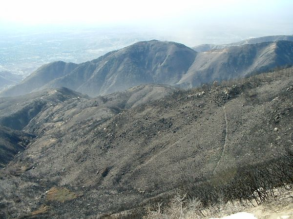 South slope of San Bernardino Mountains, below Highway 18.  This slope was covered with thick brush and scattered trees before the fire. 27 Nov 2003