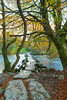 Tarr Steps on a late AUtumn afternoon wit ha few leaves remaining on the beech trees