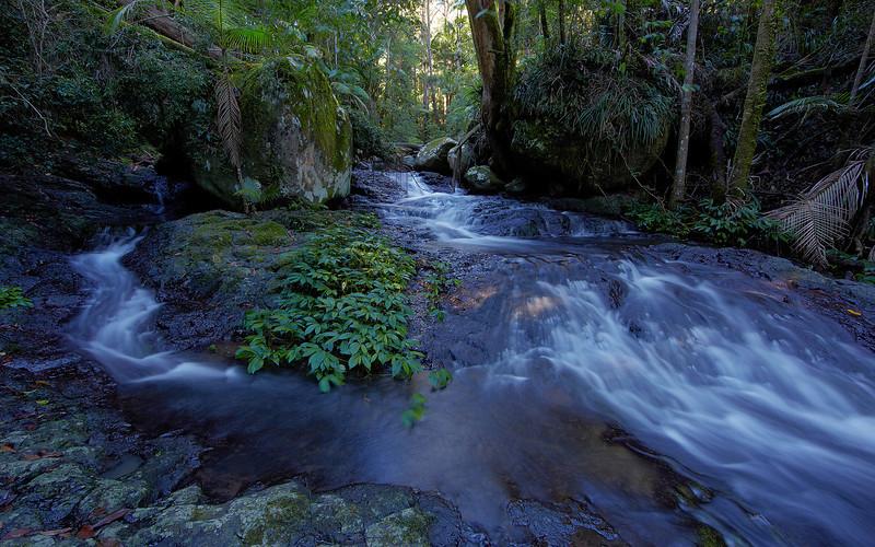 Sheepstation Creek