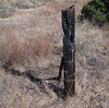 old fence post, base of Lakeview Mountains, 4 Dec 2005