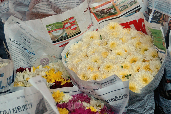 Mums for sale in Bangkok