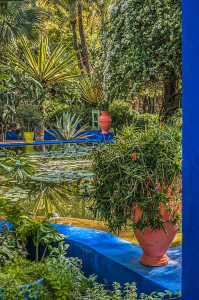Hidden pool, Majorelle Garden