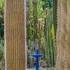Fountain with cacti, Majorelle Garden