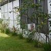 2010-07-13-P1050725