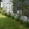 2010-07-13-P1050727