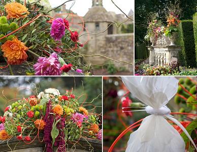 Nymans Gardens NAFAS flower show