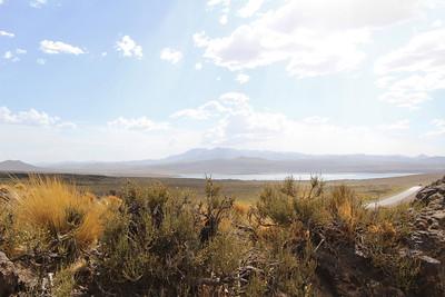 Laguna Blanco viewpoint with Ephedra chiloensis