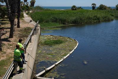 Limpieza río Carraixet