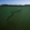 Imagenes submarinas plasticos en la playa