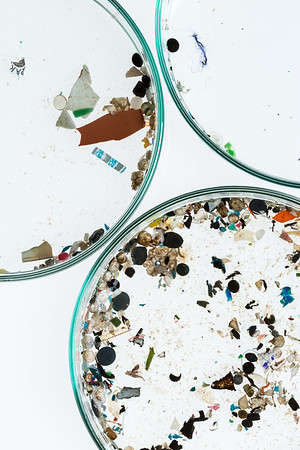 Microplastics from German Rivers