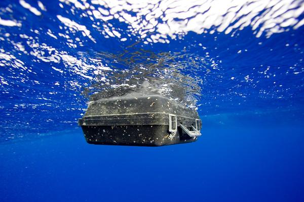 Defending Our Oceans Tour - Hawaii Trash