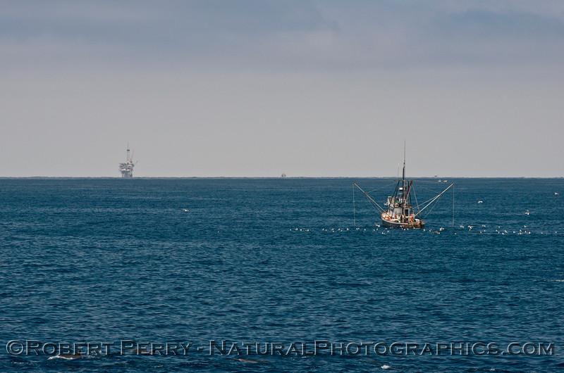 vessel fishing Alamo & oil Platform Holly 2014 07-08 SB Channel West-403