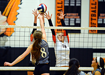 2014 Varsity Volleyball vs Lee's Summit North