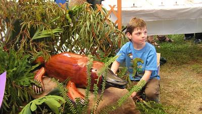 2008 Platypus Festival