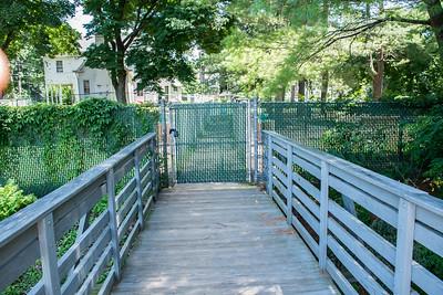2017-07-16 Green Brook Dog Park