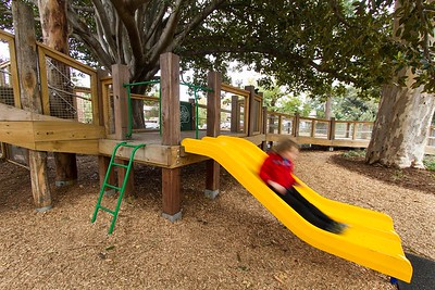dual yellow slide off timber deck