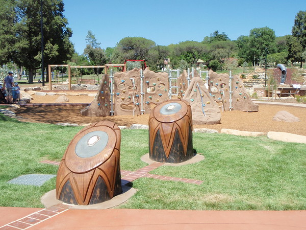 southern cross tree trunk sculpture (pointers)