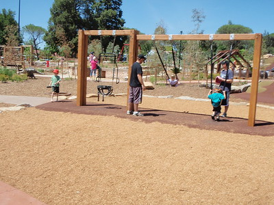 triple timber swing with baby seats and all abilities harness