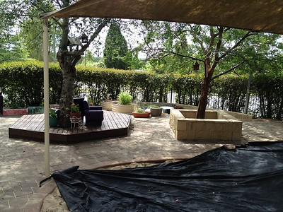 timber deck surround to tree
