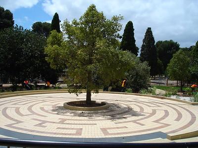circular maze of coloured brick around tree