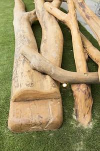 driftwood scramble