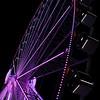 The Capital Wheel Vertical
