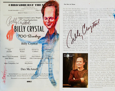 Billy Crystal in 700 Sundays