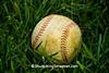 Baseball in Grass, Dane County, Wisconsin