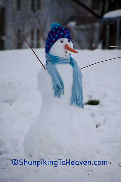 Snow Person, Green County, Wisconsin